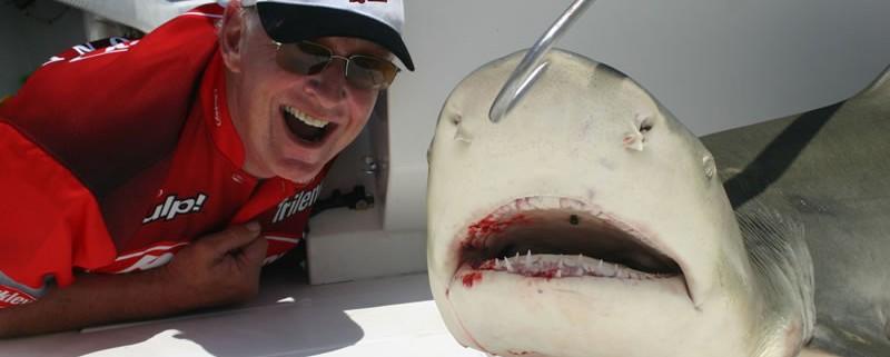 Sharks love Key West!